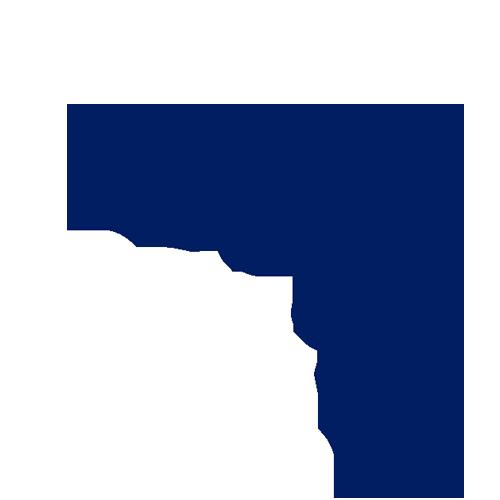 Icon-Techniek